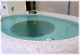 「グリーンプラザ新宿」水風呂画像